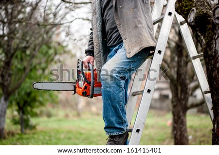 man cutting wood from trees climbing a ladder and using a chainsaw