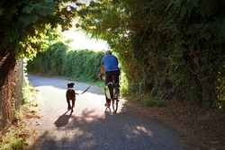 Man cycling on a country road with his dog on a leash. Backview of a man who riding with his dog that running next to him. Healthy lifestyle on a hot summer afternoon.