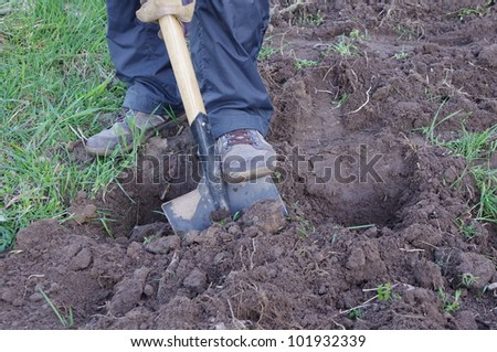 man digging ground and preparing for planting