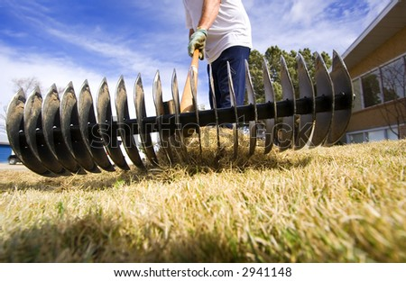 Man doing spring yard maintenance (focus on rake)