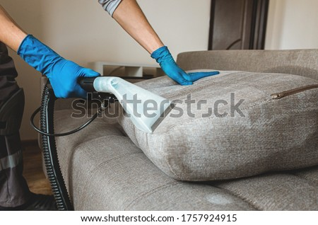 Man dry cleaner's employee hand in protective rubber glove cleaning sofa with professionally extraction method. Early spring regular cleanup. Commercial cleaning company concept