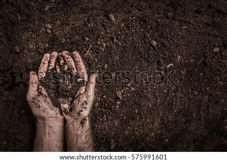 Man (farmer's) hands on soil background captured from above (top view, flat lay). Agriculture, gardening or ecology concept layout with free text (copy) space.