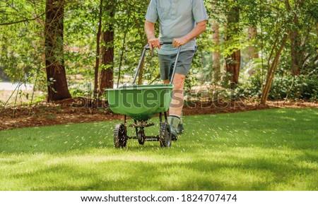 Man fertilizing and seeding residential backyard lawn with manual grass fertilizer spreader. Photo stock ©