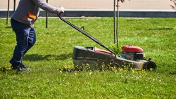 Man gardener mows grass with a lawn mower in a city park