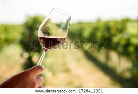 Man hand holding glass of red wine in vineyard field. Wine tasting in outdoor winery restaurant travel tour. Grape production and wine making concept.