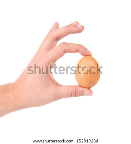 Man hand holds a brown delicate egg - stock photo