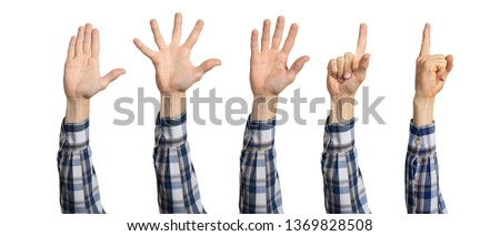 Man hands in shirt showing various gestures. Open palm, finger pointing, spread fingers and voting signs. Human hand gesturing isolated on white background. Raised arms presenting popular gestures. #1369828508
