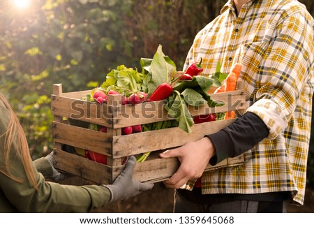 Man holding a crate of fresh vegetables and give it to woman hands. Producing organic food in farm.Close up view  #1359645068