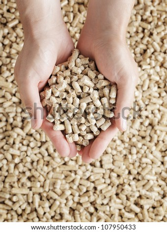 Man holding Wood Pellets (used as fuel) in his hands.