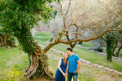 Man holds a hand and kisses smiling pregnant woman in a long dress against the background of a huge tree entwined with ivy
