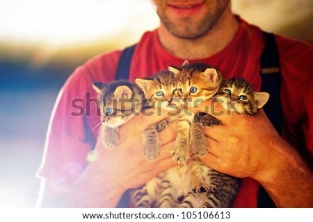 Man holds four kittens