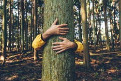 Man hugging tree bark