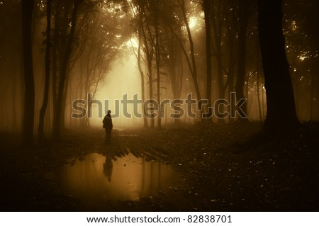 man in a forest reflecting in a pond after rain