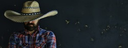 man in a hat with straw brim, hides his face, incognito guy, abstract country music style america west