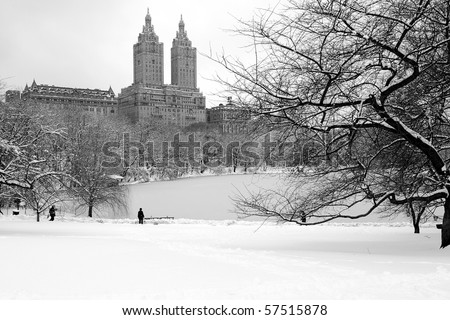 Man in Central Park During Blizzard