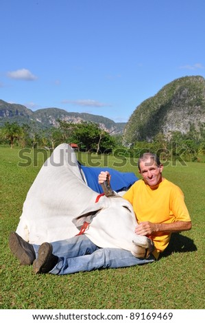 man in cuba with his white bull