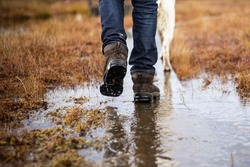 Man in hiking boots and jeans walking with dog in a rainy day swamp or a farm. Bad weather.