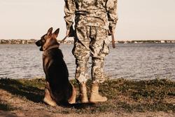 Man in military uniform with German shepherd dog outdoors, closeup