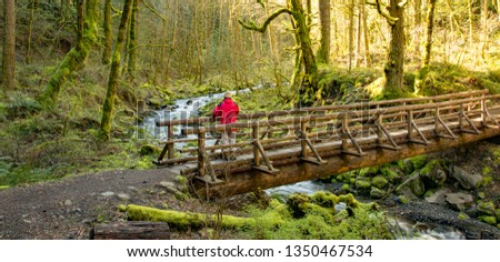 Man in red coat on a trail bridge over Gorton Creek in the Columbia River Gorge National Scenic Area, Oregon