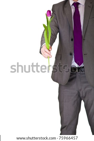 Man in suit and tie holding tulip flower isolated on white