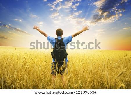Man in yellow wheat meadow. Conceptual design.