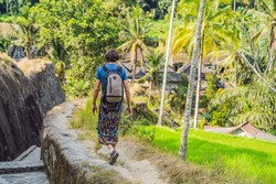 Man is a traveler in a rice paddy in Ubud, Bali, Indonesia