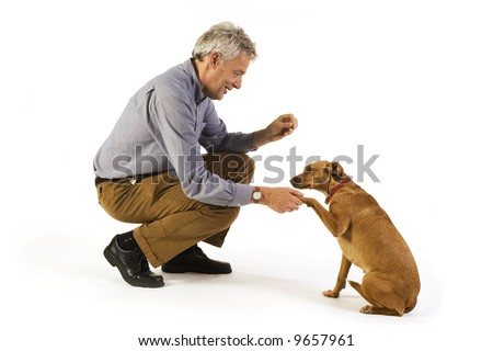 man is dog training obedience