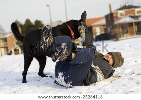 Man is playing with his black labrador dog