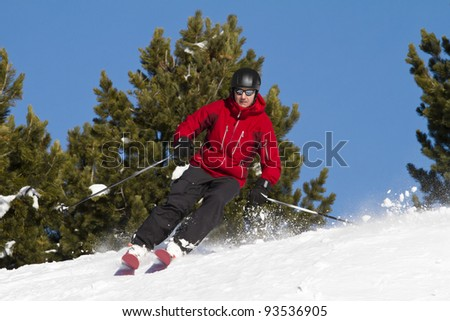 Man is skiing backcountry  between fir trees