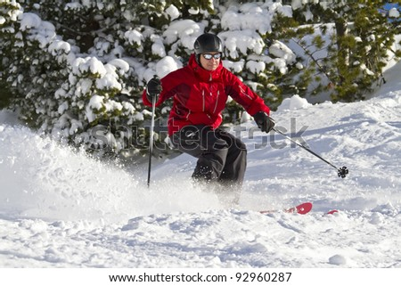 Man is skiing between trees - stock photo