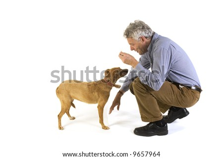 man is training his dog obedience
