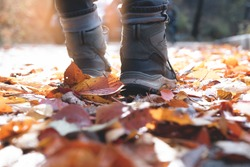 Man legs in boot and jeans walking along the street with colorful autumn leaves carpet on the ground in autumn forest with morning sunlight for background, close up