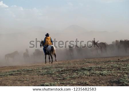 Man on horse, herd of horses #1235682583