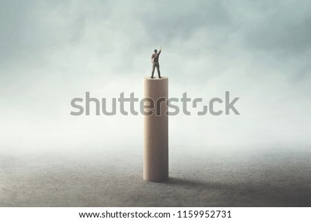 man on the top exulting, success concept