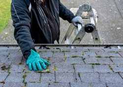 Man on top of ladder cleaning moss and dirt from a building roof - his hand in messy gloves - view from the top of the roof