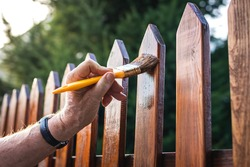 Man painting wood stain at timber plank in garden. Paint protective varnish on wooden picket fence at backyard