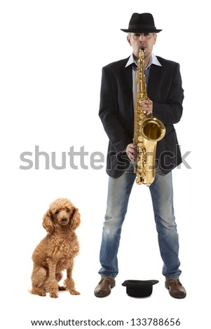 Man playing on saxophone  and red  poodle on a white background