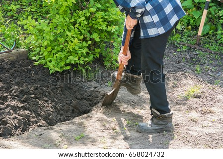 Man prepare a garden bed by digging #658024732