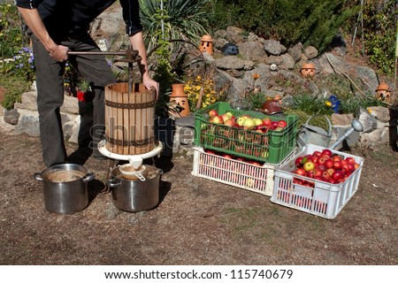 man produces apple juice, homemade fruit pressing, Autumn in the garden