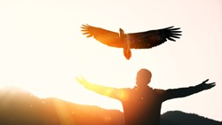 Man raise hand up on top of mountain and sunset sky with eagle bird fly abstract background. Copy space freedom travel adventure and business victory concept. Vintage tone filter effect color style.