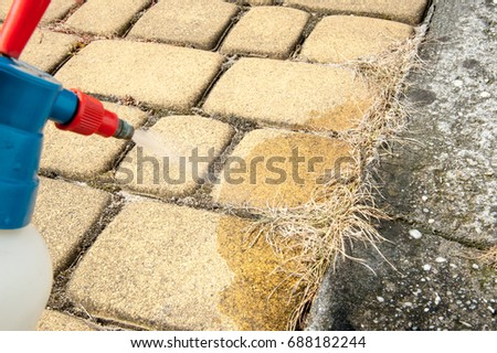 Man removes weeds from the sidewalk / cutting out weeds #688182244