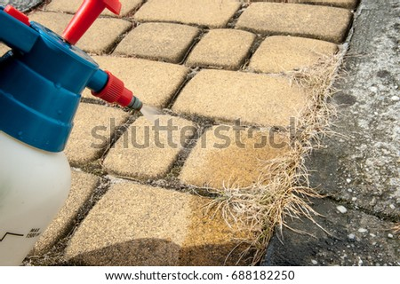 Man removes weeds from the sidewalk / cutting out weeds #688182250