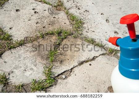 Man removes weeds from the sidewalk / cutting out weeds #688182259
