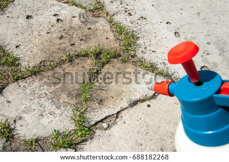 Man removes weeds from the sidewalk / cutting out weeds #688182268