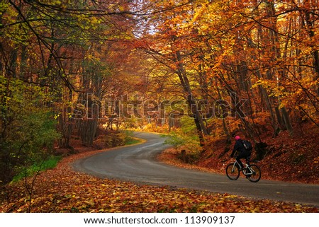 Man riding a bike on a curved road in autumn scenary Autumn bike riding