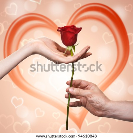 man's hand giving a rose to a woman who carefuly takes it - stock photo