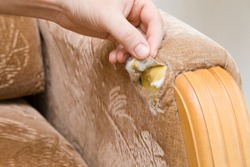 Man's hand showing damaged armrest of textile sofa. Problem concept.