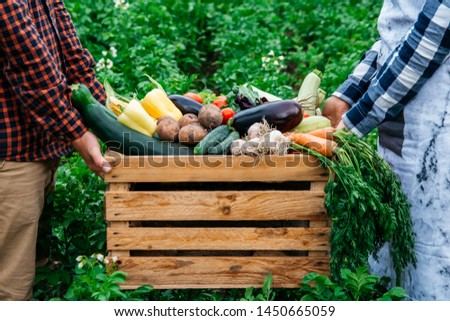 Man's hands and women holding wooden crate full of vegetables from organic garden. Harvesting homegrown produce
