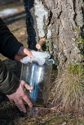 Man's hands holding a jar with birch sap. Birch sap tapping in the spring. Early spring tradition.