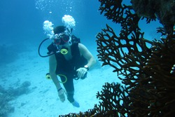 Man scuba diver, diving. Diving scuba man in Red sea, Sharm el Sheikh, Egypt